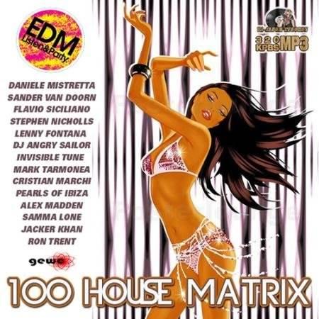 100 House Matrix (2017)
