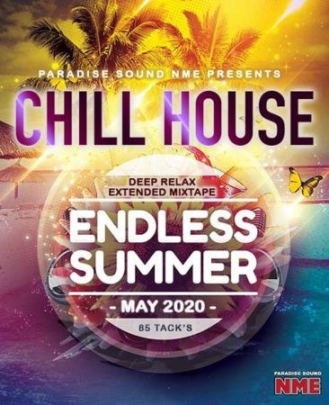 Endless Summer: Chill House Electro Mix (2020)
